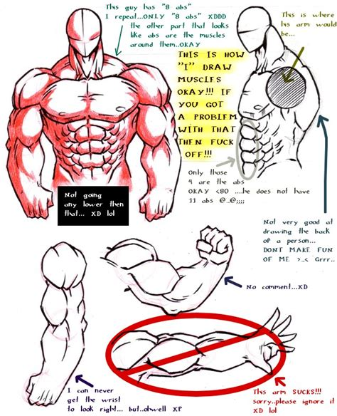how to draw muscles how quot i quot draw muscles by dokuro on deviantart