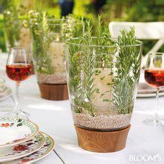 Günstige Tischdeko Hochzeit by Mediterrane Tischdeko F 252 R Die Gartenparty Tischdeko