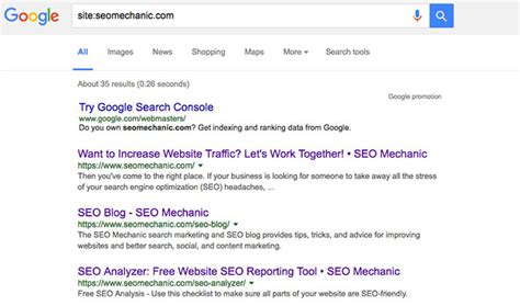 Lookup Test Seo 101 Why Is My Website Not Showing In Search Seo Mechanic