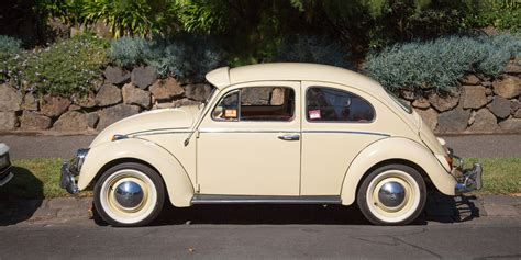 volkswagen vw beetle volkswagen beetle v 1965 v 2017 photos
