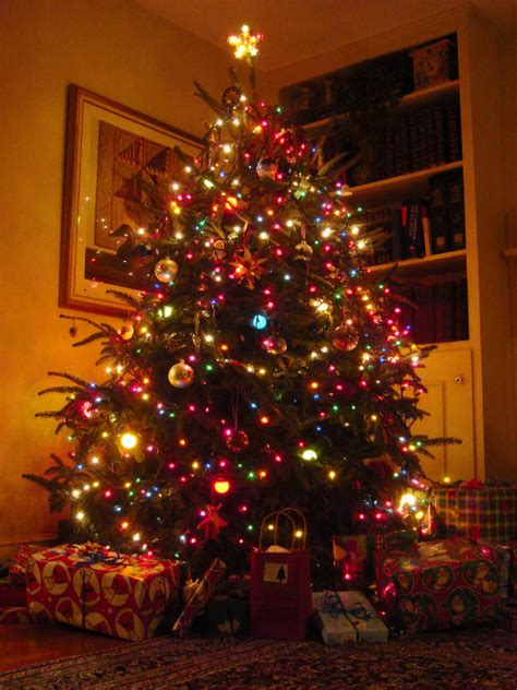 nice Pictures Of Homes Decorated For Christmas On The Inside #1: christmas%20tree.JPG