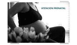 Obtetri Wiliams Ed 23 Egc atencion prenatal capitulo 8 williams ginecoobstetricia ed