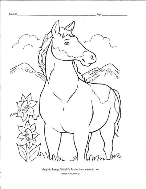 wild horse coloring pages coloring pages