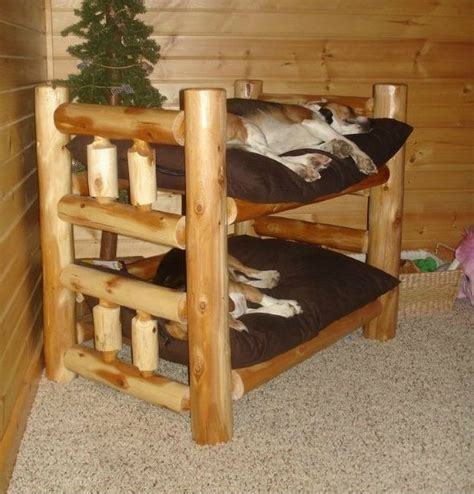 dog bunk beds fabulous dog bed design ideas your pets will enjoy the owner builder network