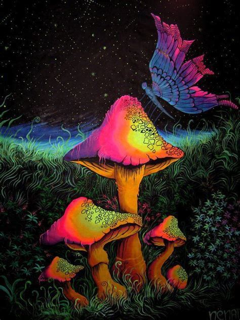 best psychedelic mushrooms 152 best psychedelic mushrooms images on fungi