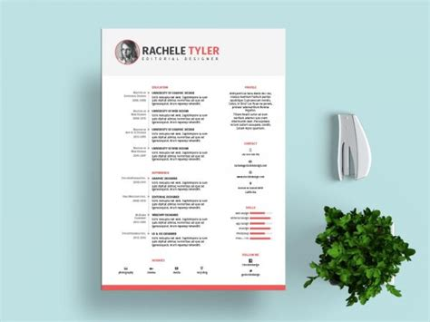 Indesign Template Resume by Free Indesign Templates Stockindesign