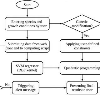 A Universal Central Metabolic Pathway For Bacteria The