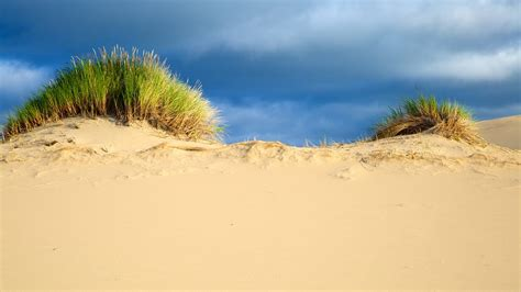 United Airlines Booking oregon dunes national recreation area vacations 2017