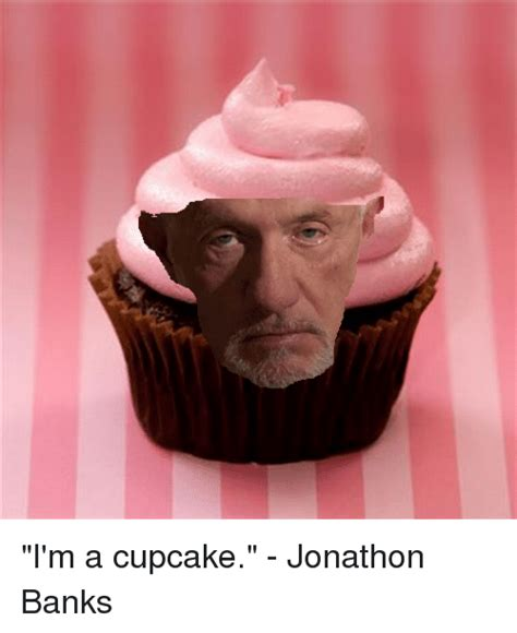 Im On The Banks Show by I M A Cupcake Jonathon Banks Breaking Bad Meme On Sizzle