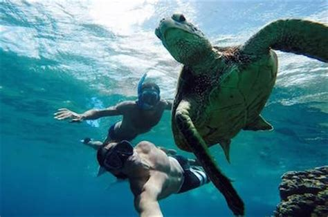 catamaran tours in san juan puerto rico best things to do in san juan tours and activities