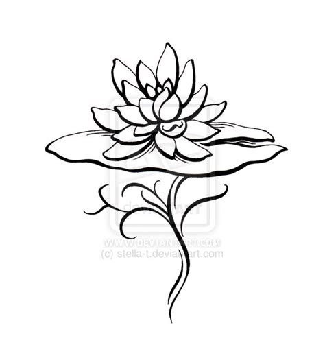 water lily tattoo design lotus lotus and lotus on