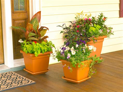 Patio Plant Containers How To Design A Container Garden Hgtv