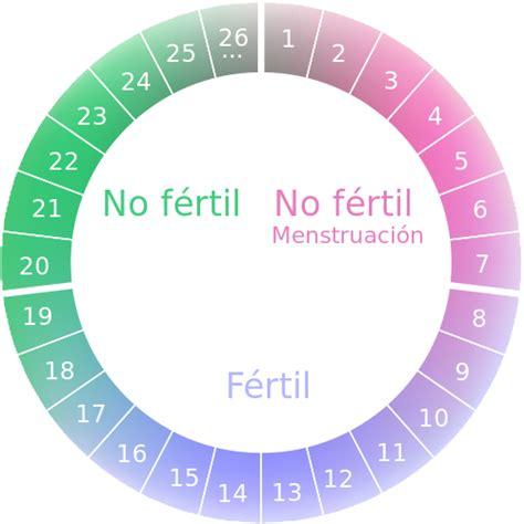 Calendario De La Ovulacion Ciclo Fertil Ovulacion