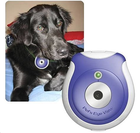 gadgets for pets 10 cool photographers gadgets to boost creativity