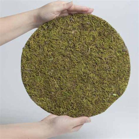 Moss Mats by Artificial Moss Mat Drieds Botanicals