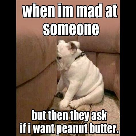 Peanut Butter And Jelly Meme - best 25 peanut butter meme ideas on pinterest puppy