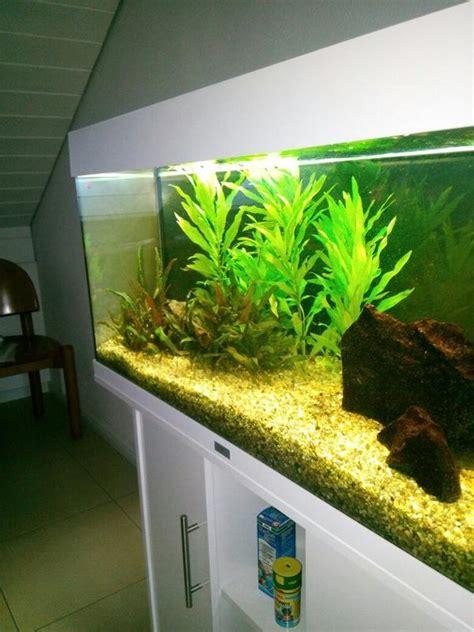 gebrauchtes aquarium kaufen aquarium pass neu und gebraucht kaufen bei dhd24