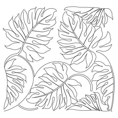 jungle coloring pages jungle patterns search banque graphique zen