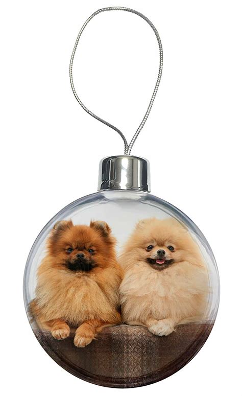 pomeranian gifts uk pomeranian dogs tree bauble decoration gift ad