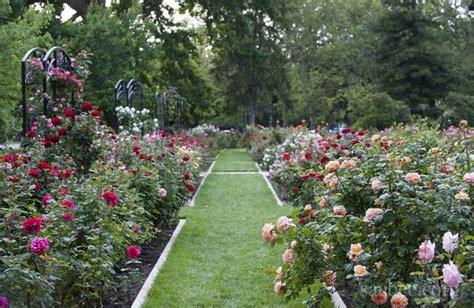 Garden Sacramento by Mckinley Park Garden East Sac Sacramento