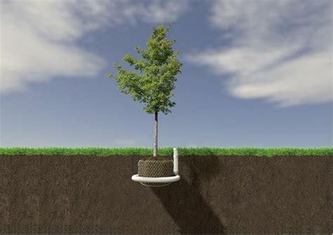 phd advisor tree airmax bio beluchting greenmax