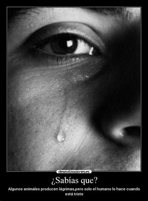 imagenes triztes llorando im 225 genes y carteles de llorando pag 105 desmotivaciones