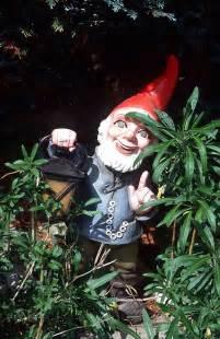 phobias on garden gnomes beards and gnomes
