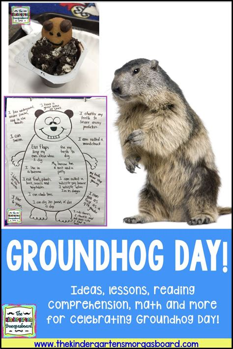 groundhog day gift ideas best 25 teachers day ideas on s day