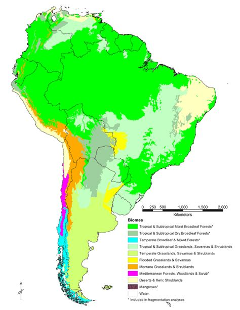 south america biome map