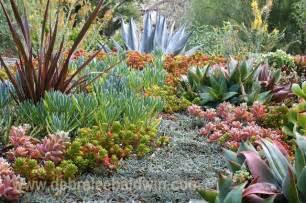 succulent gardens eclectic landscape san diego by debra lee baldwin