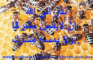 Recharge Your Iman 窶ォ recharge your iman home facebook窶ャ