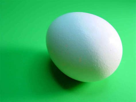 protein 3 eggs egg is complete protein food