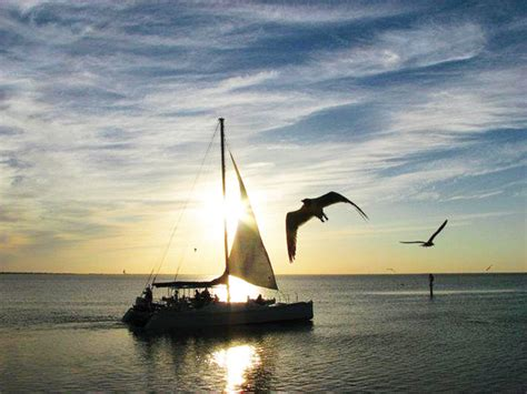 south padre island catamaran dinner cruise it s your business southern wave offers one of a kind