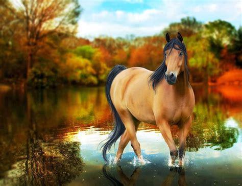 wallpaper horse free download all new wallpaper hd wallpapers desktop horse free