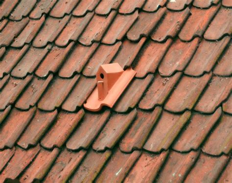 Ceramic Tile Roof Turn Your Roof Into A Bird Sanctuary With Ceramic Birdhouse Roof Tiles By Klaas Kuiken Colossal