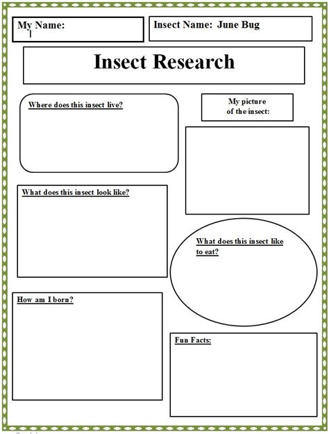 insect templates 17 best images about classroom book reports on