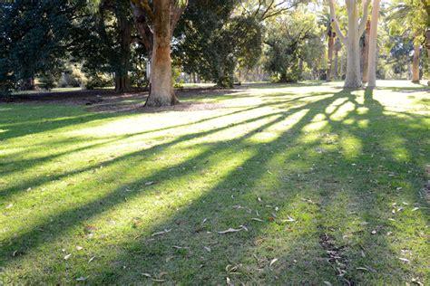 Botanic Gardens And Parks Authority Botanic Gardens And Parks Authority Saw Avenue Lawn South