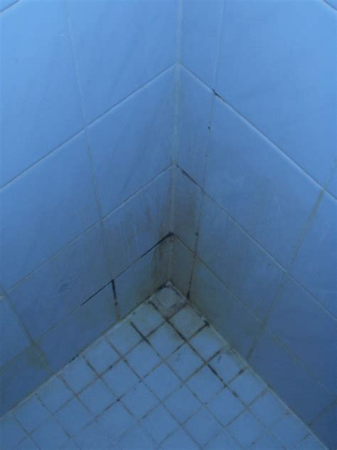 how to prevent soap scum on shower doors reduce mildew and soap scum in the shower