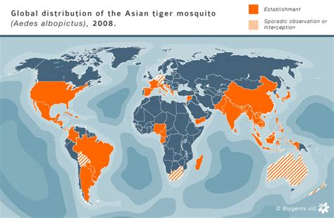 mosquito map usa tiger mosquito world maps and distribution us asia