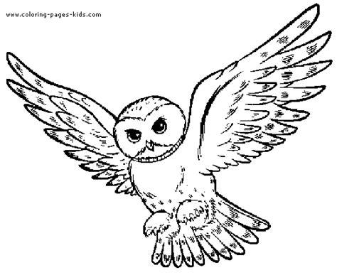 spotted owl coloring page flying owl color page