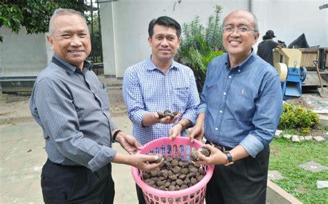 Kompor Listrik Di Bali dua wilayah di bali akan menggunakan listrik kerakyatan
