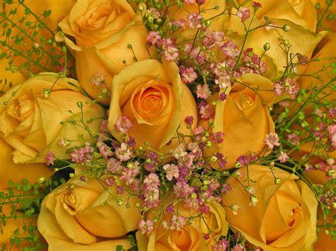foto mazzo di fiori per compleanno mazzi di fiori per auguri ey39 187 regardsdefemmes