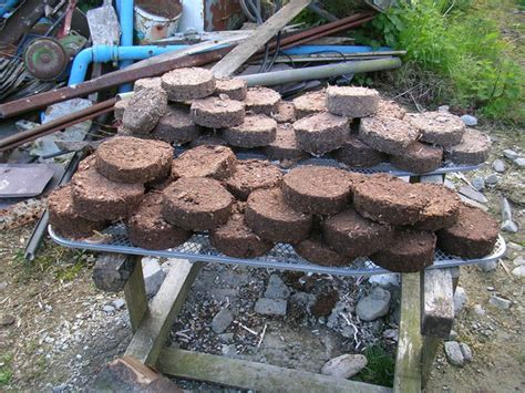 How To Make Paper From Sawdust - bio fuel briquettes compress paper pulp and sawdust into