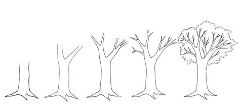 easy tree to draw how to draw a tree dr