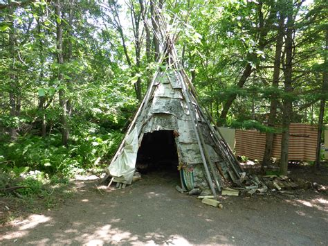 the shelter building a survival shelter outdoor revival