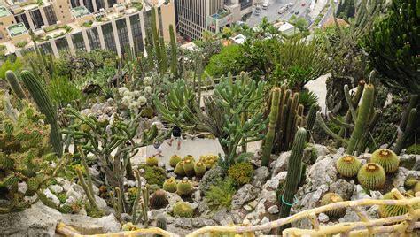 giardino botanico montecarlo visiter monaco tourisme et choses 224 faire getyourguide fr