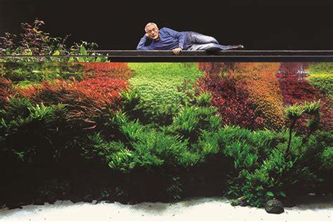 aquarium design amano indonesia new takashi amano bio an aquarium life