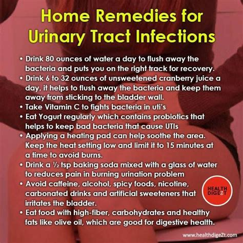 how to treat urinary tract infection in dogs via health digest on https www