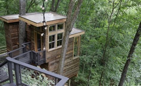 coolest treehouse in the world pete nelson of treehouse masters on the world s coolest