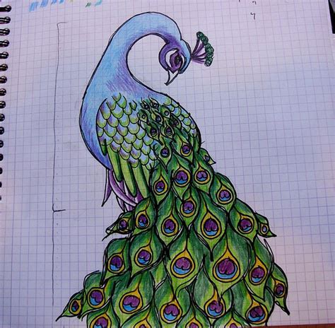 doodle paint 1000 images about peacock on stained glass